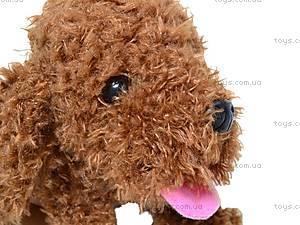 Интерактивная собака «Веселые друзья», CL1186B, цена