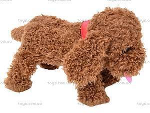 Интерактивная собака «Веселые друзья», CL1186B, игрушки