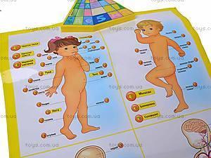Интерактивный плакат «Анатомия», 13129, цена