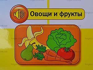 Интерактивный плакат «Анатомия», 13129, детские игрушки