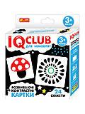 IQ-club для малышей «Контрасні картки», 13203014У, купить