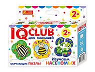 IQ-club для малышей «Вивчаємо комах» рус., 6366Р13152031Р, отзывы