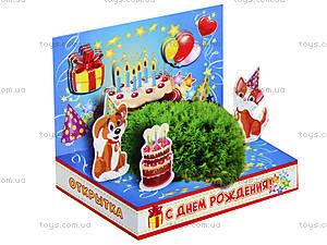 Живая открытка «С Днем рождения», 0252, цена