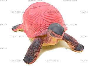 Игрушечное животное «Черепашка», D7166, магазин игрушек