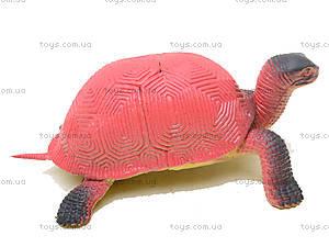 Игрушечное животное «Черепашка», D7166, toys