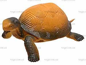 Игрушечное животное «Черепашка», D7166, отзывы