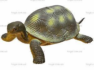 Игрушечное животное «Черепашка», D7166, игрушки