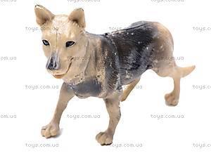 Животные домашние «Ферма», H6014, цена