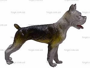 Животные «Собачки», D8516, купить