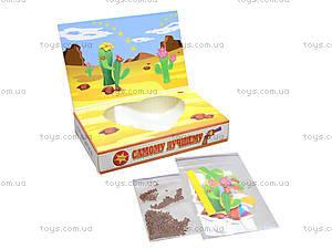Живая открытка «Вырасти меня», 13135001Р, цена