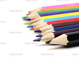 Карандаши цветные заточенные, 12 штук, CIAB-US1-P-12, фото