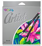 Карандаши цветные Premium 24 цвета Artist Colorino, 65221PTR, цена