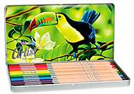 Карандаши цветные в металлической упаковке серия Artist 12 цветов Colorino, 83256PTR, игрушки
