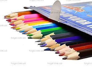 Карандаши для рисования, 24 цвета, 290246, фото