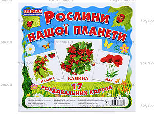 Мини-карточки «Растения нашей планеты», 1014-1, отзывы
