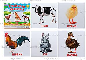Мини-карточки «Домашние животные», 1025-1