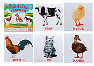 Мини-карточки «Домашние животные», 1025-1, фото