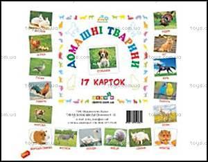 Карточки для развития «Домашние животные», 65945