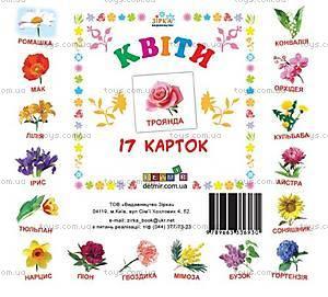 Карточки-мини «Цветы», 72754