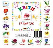 Карточки-мини «Цветы», 72754, фото