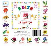 Карточки-мини «Цветы», 72754, toys.com.ua