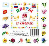 Карточки-мини «Цветы», 81664, фото