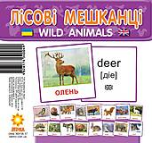 Карточки-мини «Лесные жители», 66425