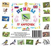 Карточки мини «Птицы», 81662, отзывы