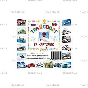 Карточки-мини «Транспорт», 81666