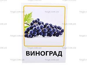 Обучающие карточки «Фрукты, овощи и ягоды», VT1301-02, игрушки