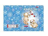 Картон белоснежный А4 10 листов, в картонной папке (5 штук в упаковке), ТЕ462165, toys.com.ua