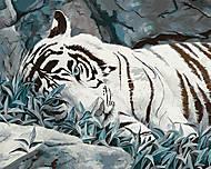 Картина для рисования «Белый тигр», КН2453