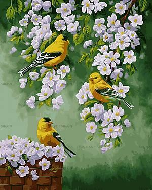 Картина для рисования «Зяблики на яблоне», КН2427