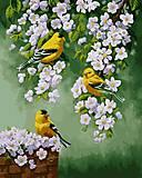 Картина для рисования «Зяблики на яблоне», КН2427, фото