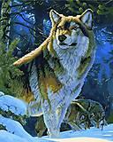 "Картина по номерам + Алмазная мозаика ""Гордый волк"" ★★★★, GZS1029, купити"