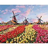 """Картина по номерам """"Красочные тюльпаны Голландии"""", 40*50 см, КНО2224, купить"""