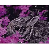 """Картина по номерам """"Кролик в цветах"""", VA-0449, отзывы"""