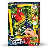 Картина по номерам «Попугаи», KN-01-02