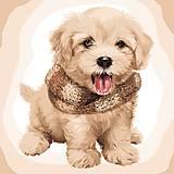 Картина по номерам «Пушистый щенок» 40*50 см, КНО4116, фото