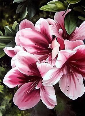 Картина по номерам «Розовая лилия», КНО2911