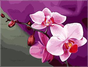 Картина по номерам «Розовые орхидеи», КН1081