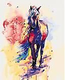Картина по номерам «Смелая Айлин», КНО2497