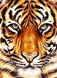 Картина по номерам «Сила тигра», КНО2459, отзывы