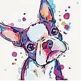 Картина по номерам «Забавный малыш 2», КНО4016, фото