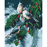 Картина по номерам «Зимние птички», КНО4081