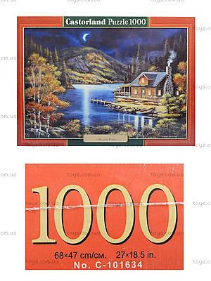 Пазл Castorland на 1000 деталей «Домик в лунном свете», 2990