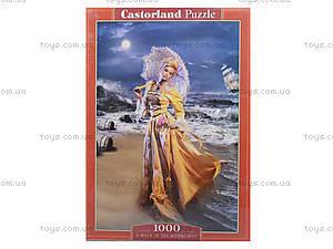 Пазл Castorland на 1000 деталей «Прогулка в лунную ночь», 3324, купить