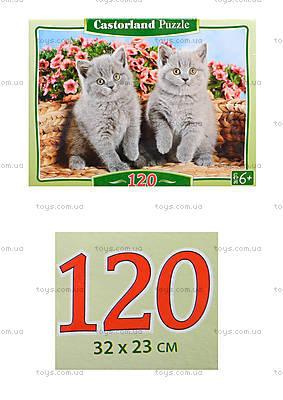 Пазл на 120 деталей MIDI «Серые котята», B-12565