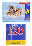 Пазл Castorland 120 midi «Котята на одеяле», В-13111, купить