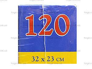 Пазл Castorland 120 midi «Тайны моря», В-13166, отзывы
